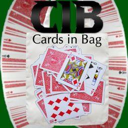 C.I.B. Cards in Bag - Dominique Duvivier